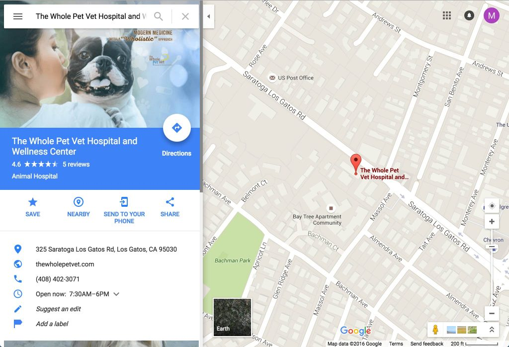google-map-business-listing